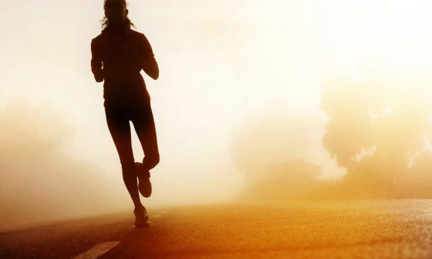17ος Πανελλήνιος Αγώνας Δρόμου 120+χλμ, 100+χλμ & 11ος 50+χλμ εις μνήμη Αλέξανδρου Θεοφανίδη